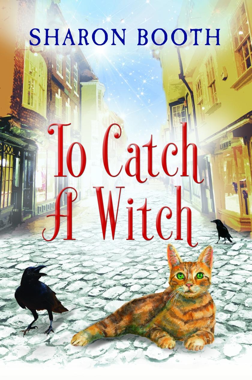 TO CATCH A WITCH_FRONT_RGB_150dpi