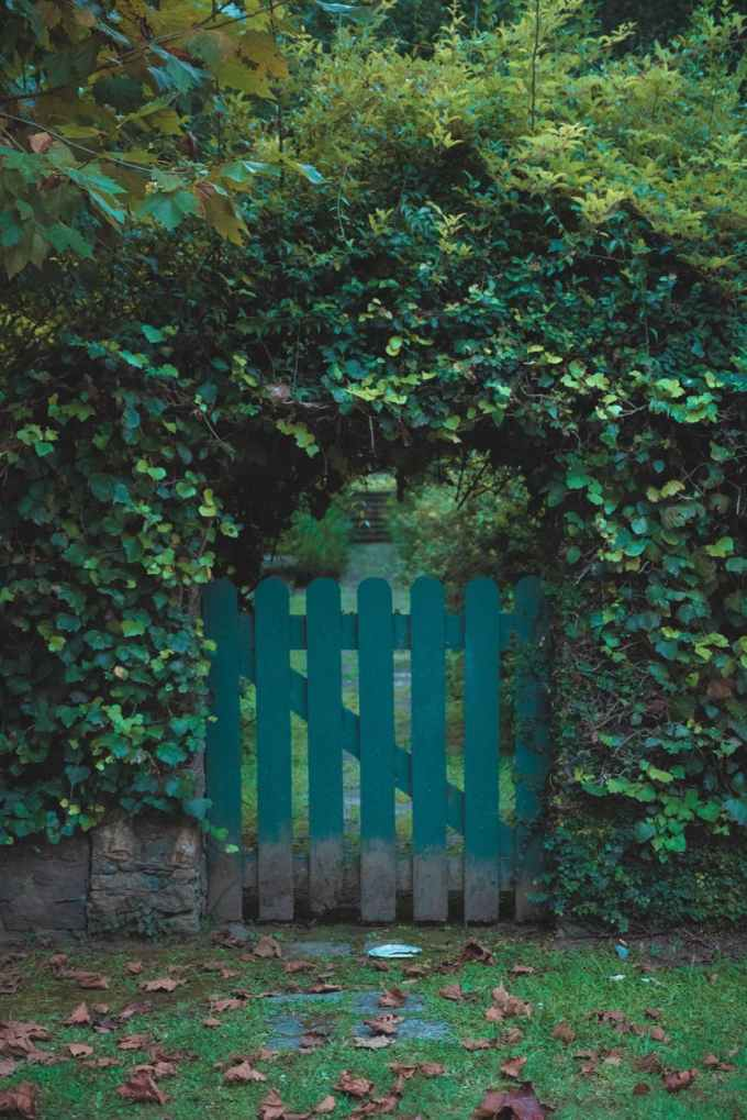 closed green wooden gate